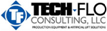 Tech-Flo Consulting LLC